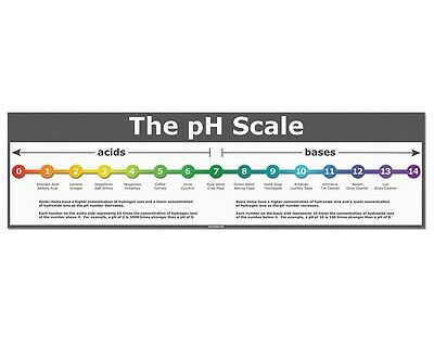 The pH Scale - Classroom Poster