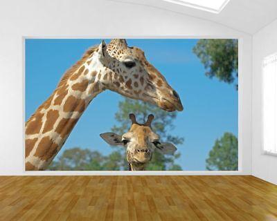 Fototapete Mutter und Baby Giraffe