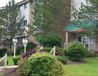 1 & 2 Bedroom Apartments Available in Pet Friendly Community