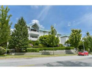 204 2083 COQUITLAM AVENUE Port Coquitlam, British Columbia