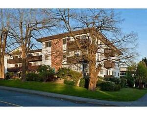 113 910 FIFTH AVENUE New Westminster, British Columbia