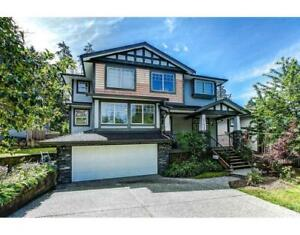 24426 MCCLURE DRIVE Maple Ridge, British Columbia