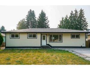 11645 STEEVES STREET Maple Ridge, British Columbia