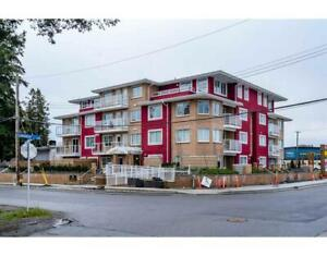 205 1990 WESTMINSTER AVENUE Port Coquitlam, British Columbia