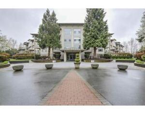 209 8200 JONES ROAD Richmond, British Columbia