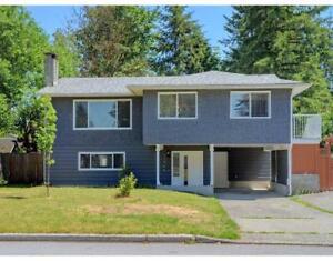 11968 HALL STREET Maple Ridge, British Columbia