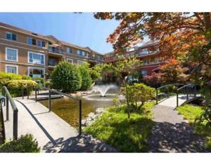 227 3 RIALTO COURT New Westminster, British Columbia