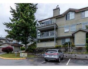 23 11502 BURNETT STREET Maple Ridge, British Columbia