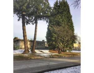 5290 WILLOW STREET Vancouver, British Columbia