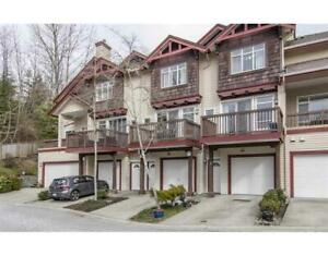 45 15 FOREST PARK WAY Port Moody, British Columbia