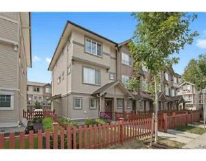 151 10151 240 STREET Maple Ridge, British Columbia