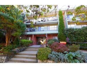 225 1844 W 7TH AVENUE Vancouver, British Columbia