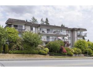 315 3080 LONSDALE AVENUE North Vancouver, British Columbia