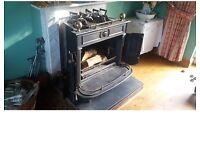 Fire Storax Wood Burner Regency 8kw duel fuel