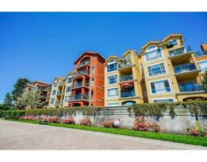 226 3 RIALTO COURT New Westminster, British Columbia