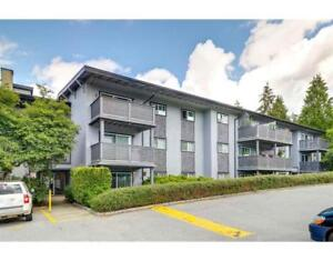 141 200 WESTHILL PLACE Port Moody, British Columbia