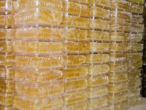 Beautiful & Succulent Comb Dripping with Honey! Pure Honey Comb 14-17 ounces