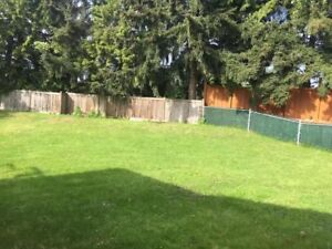 Spacious south surrey 2 bedroom for rent