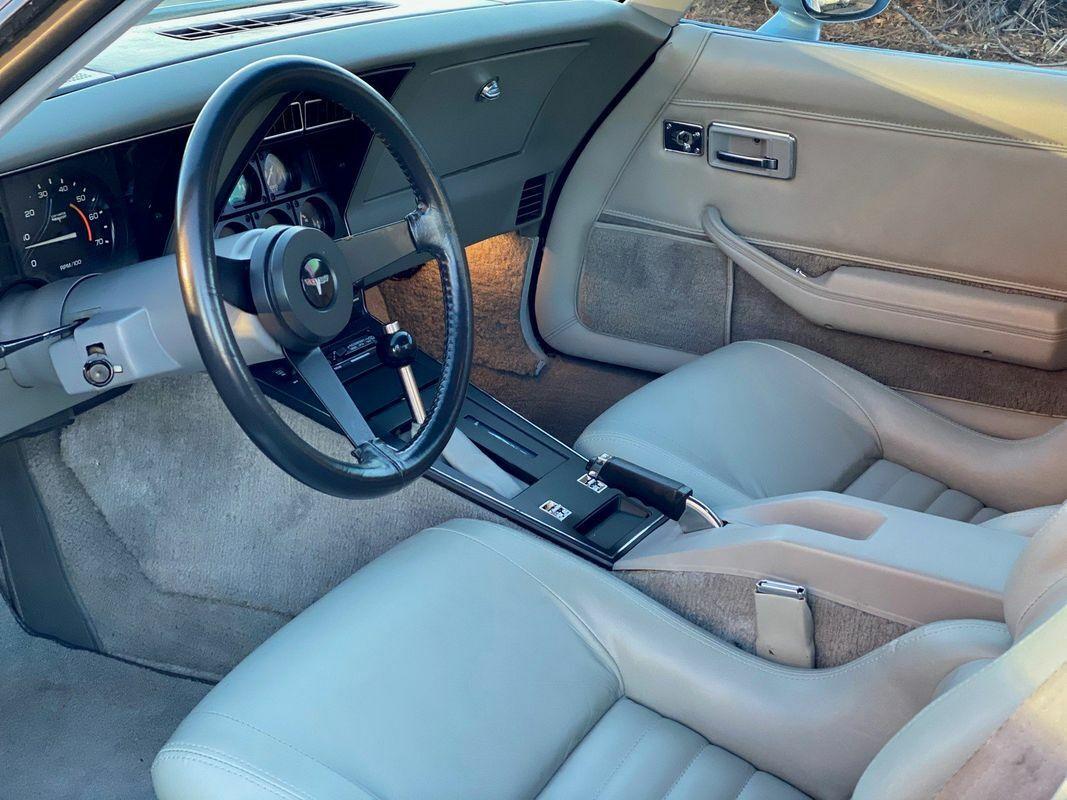 1981 Silver Chevrolet Corvette Coupe  | C3 Corvette Photo 8