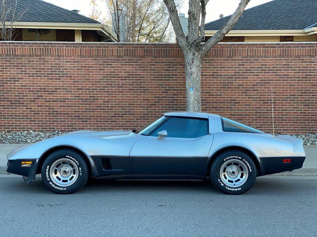 1981 Silver Chevrolet Corvette Coupe  | C3 Corvette Photo 5