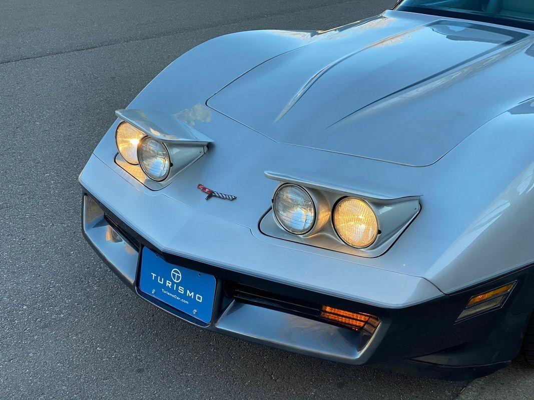 1981 Silver Chevrolet Corvette Coupe  | C3 Corvette Photo 7