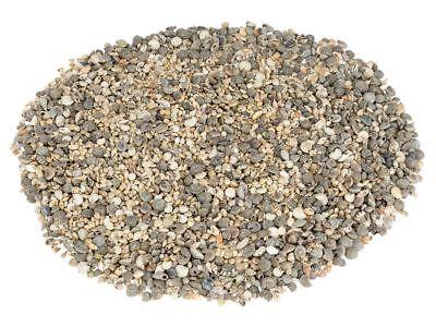 NaDeco® Muschelmix mini 1kg ca. 0,5 - 2cm   kleine Bastelmuscheln   Kleine Musch