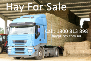 Hay & Feed Grain For Sale