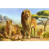 Modern Art HD prints oil painting on canvas African Lion Family 16x24