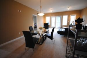 Furnished 2 bdrm condo in Terwillegar! 2 u/g parking stalls!