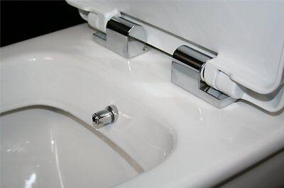 What Is Combine Bidet Toilet