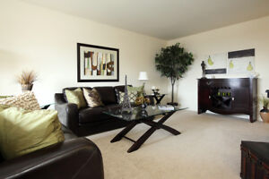 Updated Two Bedroom for Rent in Brantford - Close to 403/401