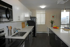 Renovated 1 Bedroom- Updated Kitchen, Private Balcony | Hamilton