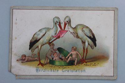 Herzlichste Gratulation - Litho zur Taufe Storchenpaar, um 1880