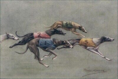 - Greyhound Dog  Races 1920's Persis Kirmse Art -  8 LARGE New Blank Note Cards