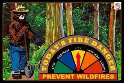 HAWAII SMOKEY BEAR FIRE DANGER SIGN W GAUGE! RAINBOW EUCALYPTUS FOREST MAUI U.S.