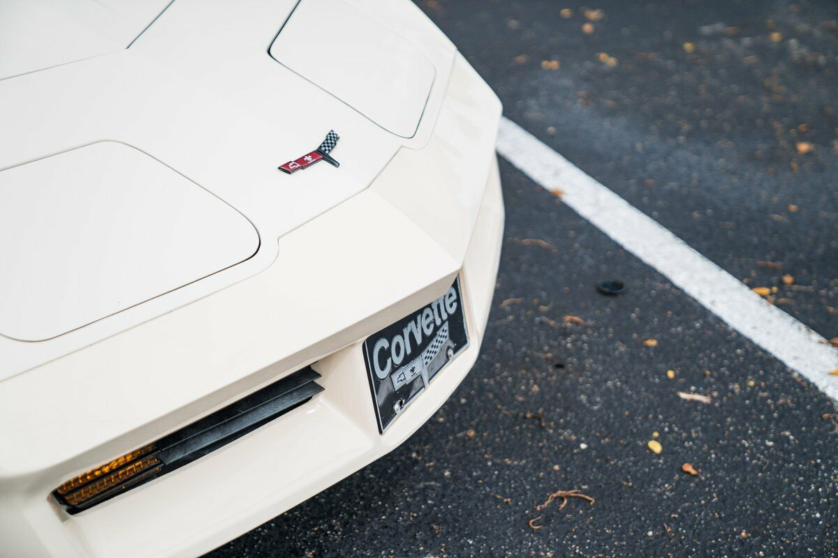 1981 Beige Chevrolet Corvette   | C3 Corvette Photo 4