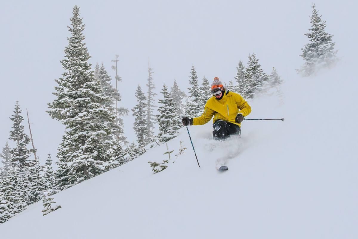 Freeheel Life Telemark Ski Shop