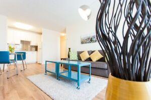 Centre-Ville - 3 1/2  louer - 1 Bedroom Apartment for rent