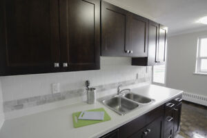 Fully Renovated 2 Bdrm Apt- Scenic View!