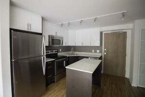 Large Condo Style Apartment in Centretown! Pet Friendly!