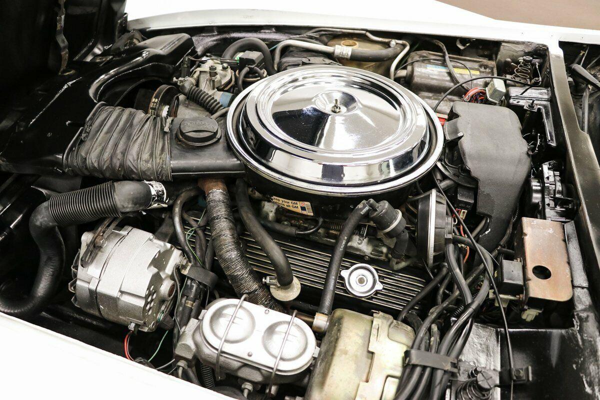 1981 White Chevrolet Corvette   | C3 Corvette Photo 9