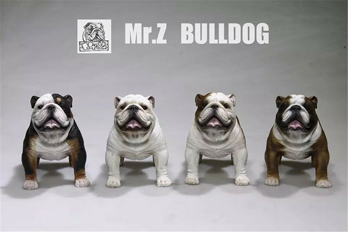 Mr.Z 1//6 2Pcs British Bulldog Bull Dog Pet Figure Animal Toys Collector Decor