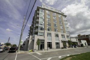Large Luxurious 1 Bed in the Heart of Westboro!