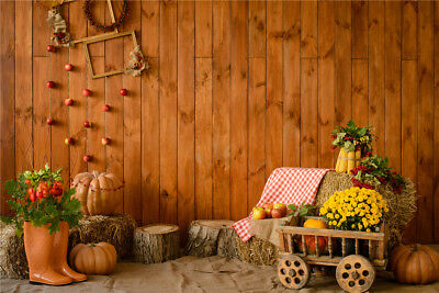 US 7x5FT Vinyl Rustic Harvest Festival Thanksgiving Studio Backdrop Background (Thanksgiving Backdrop)