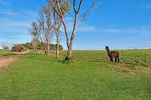 6547 Port Wakefield Highway, Wild Horse Plains via Dublin Wild Horse Plains Mallala Area Preview