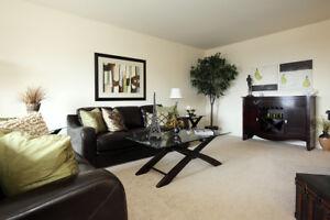 Two Bedroom: Brantford - Close to 403/401 - Recent Updates -Feb