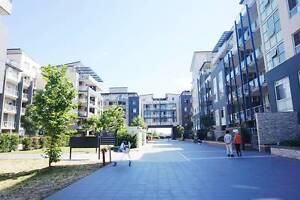THREE BEDROOM + STUDY + HUGE COURT YARD Homebush West Strathfield Area Preview