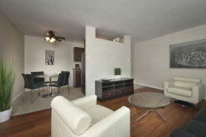 1st Floor - 2 Bedroom (Suite #106) Available October 1st