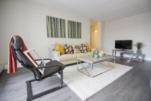 Fully Renovated 2 Bedroom in Hamilton! Bright & Pet Friendly!
