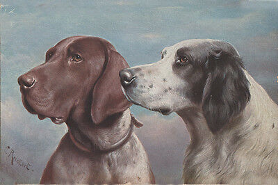 English Setter & German Pointer Dogs by C REICHERT - LARGE New Blank Note Cards  ()